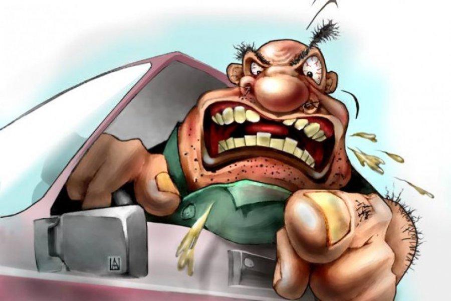 Днем, смешные картинки водителя